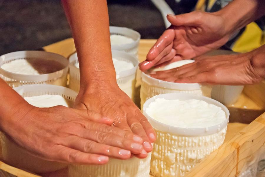 Taller de elaboración de queso de cabra artesano