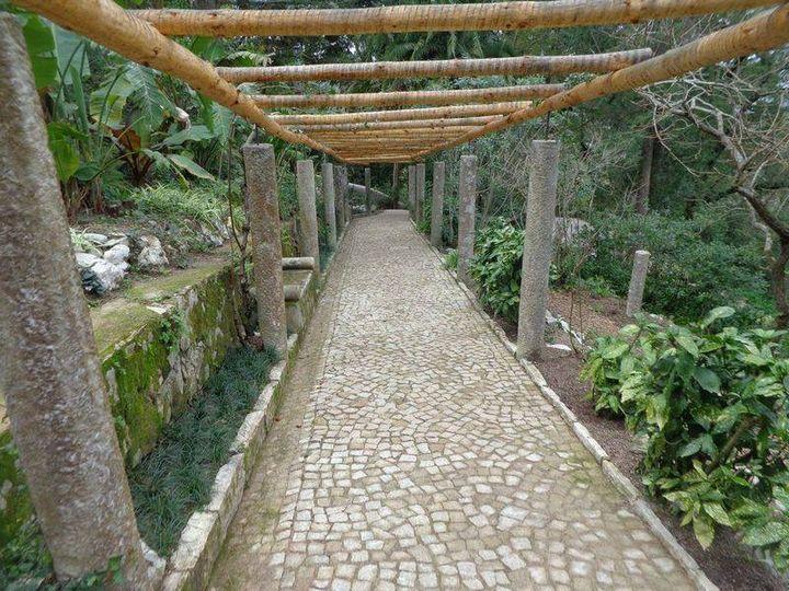 Caminhando na Serra de Sintra (Vila Sassetti e Santa Eufémia)