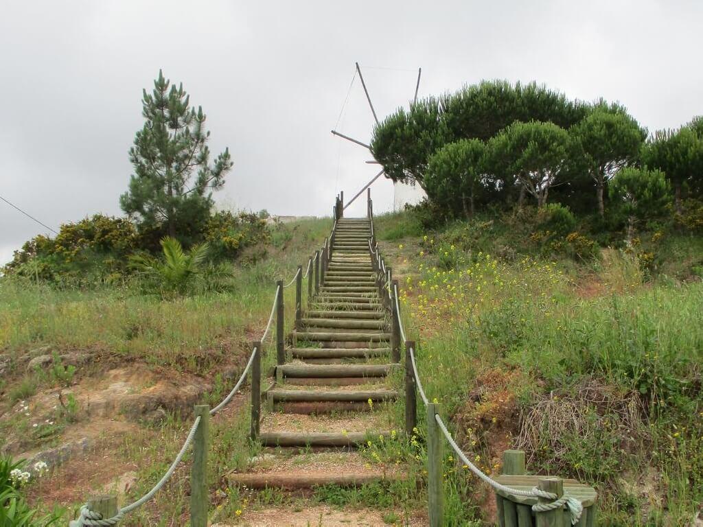 Caminhando no Vale Verde da Abelheira