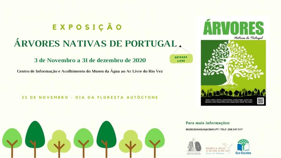 """Exposição """"Árvores Nativas de Portugal"""""""