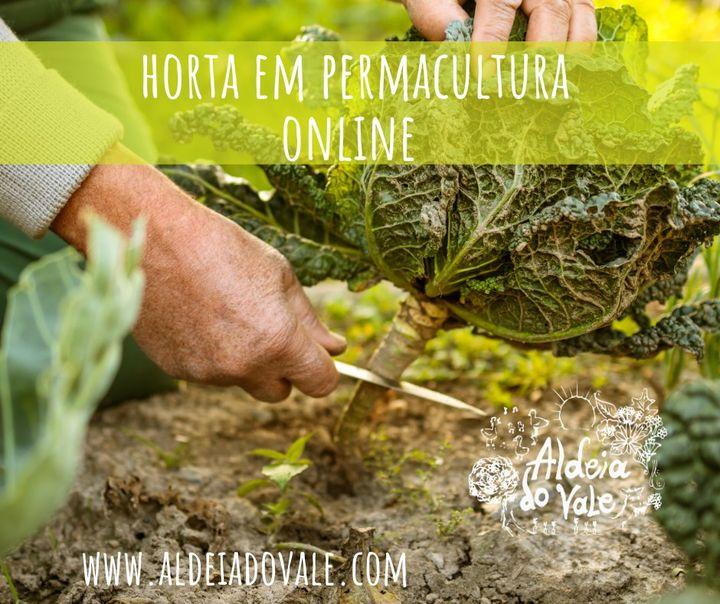 Horta em Permacultura ONLINE co Sílvia Floresta