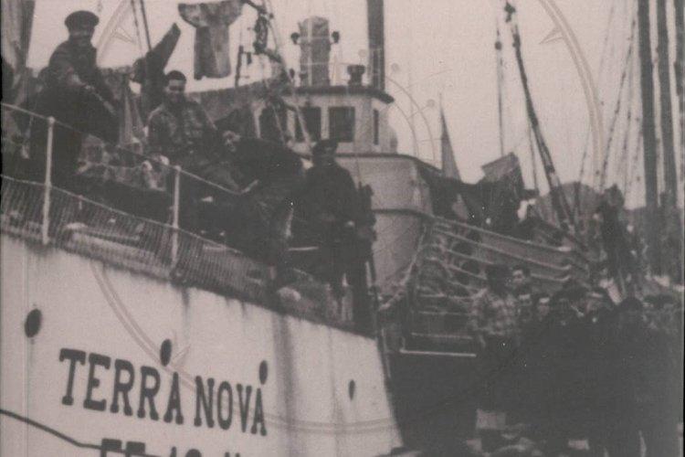 Os Últimos Terranovas Portugueses e Saga Maior
