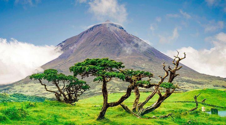 Ilhas do Faial, São Jorge e Pico (Açores)