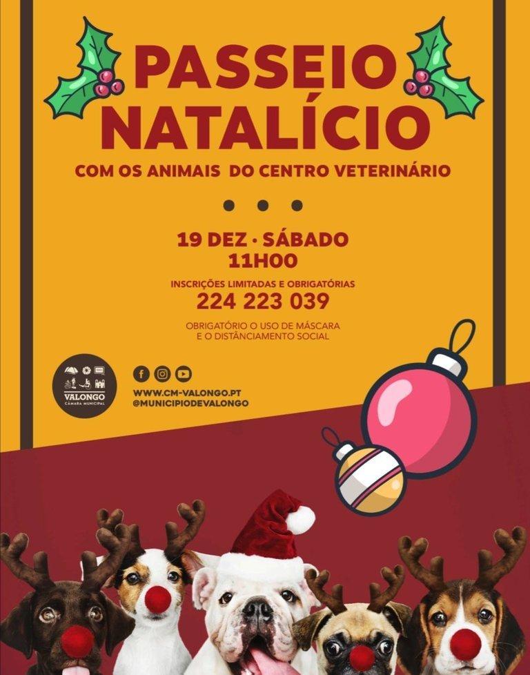Passeio Natalício com os animais do Centro veterinário Municipal