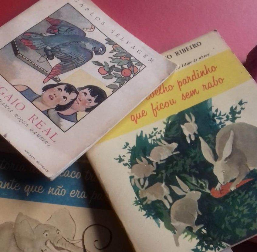 Ler Maior - Biblioteca infinita [CANCELADO]