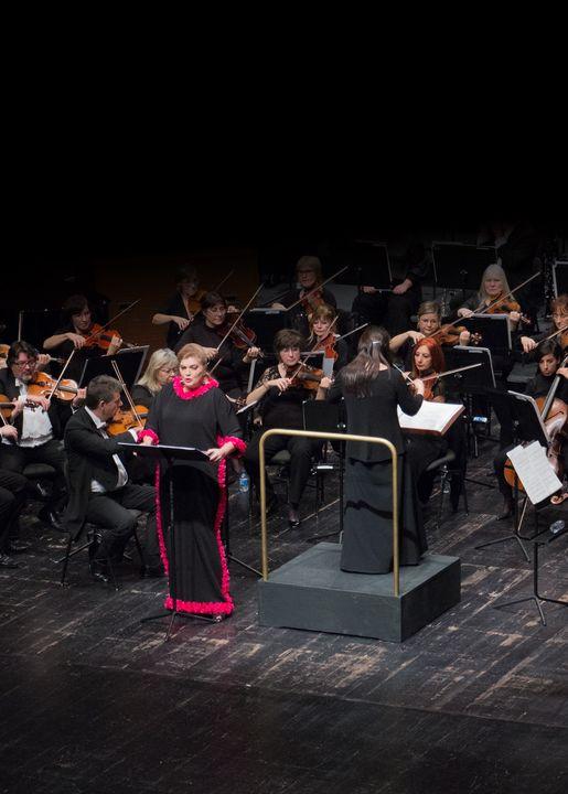 Concerto de Ano Novo   Teatro Nacional São Carlos