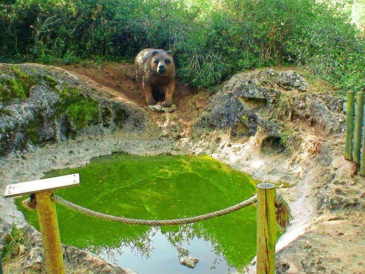 Caminhando à Descoberta da Pia do Urso