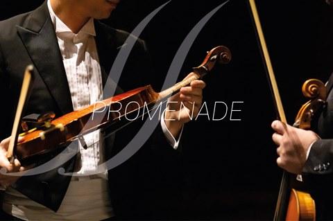 Concerto Promenade - Orquestra Clássica do Sul