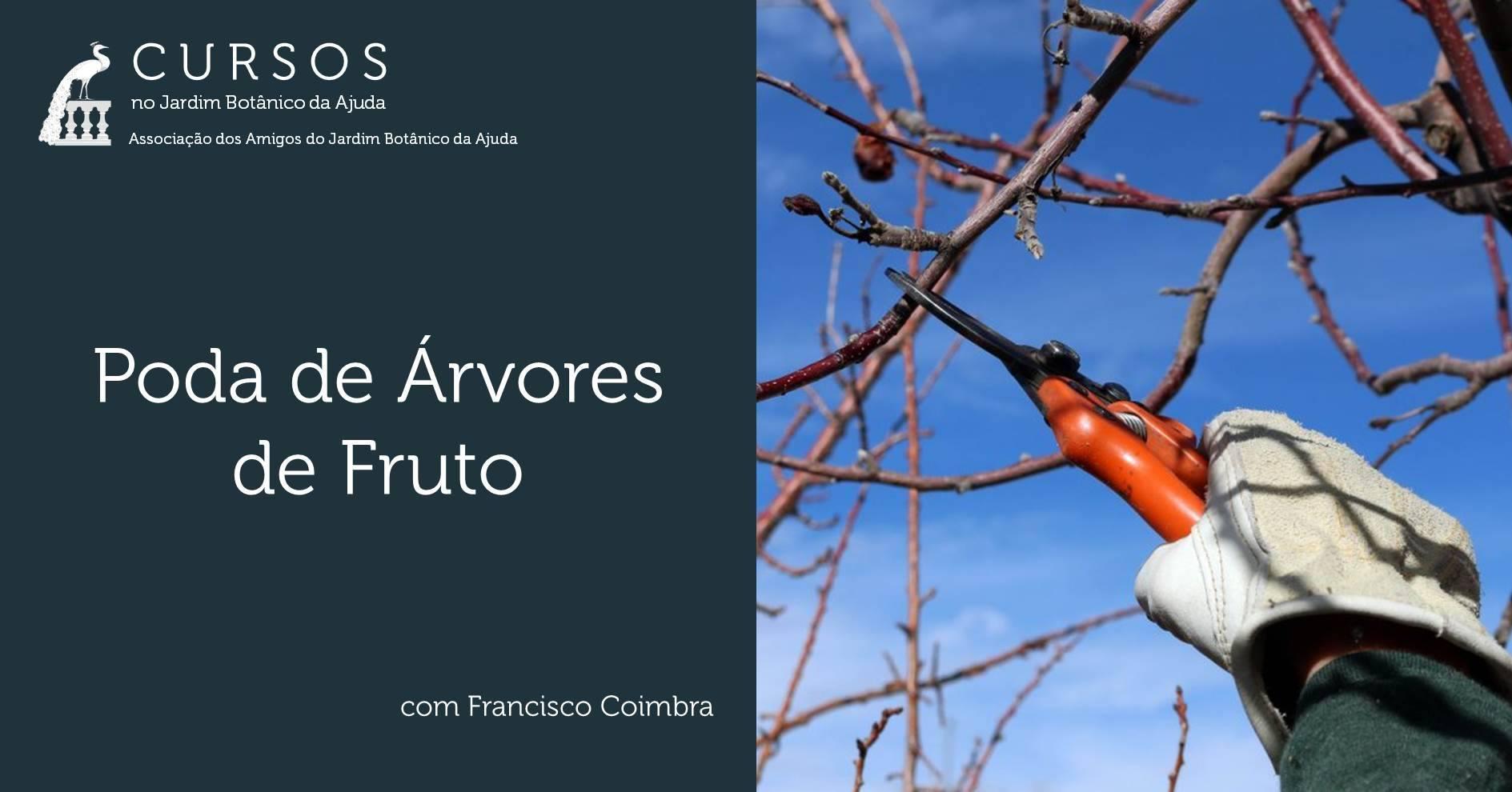 Poda de Árvores de Fruto - ADIADO