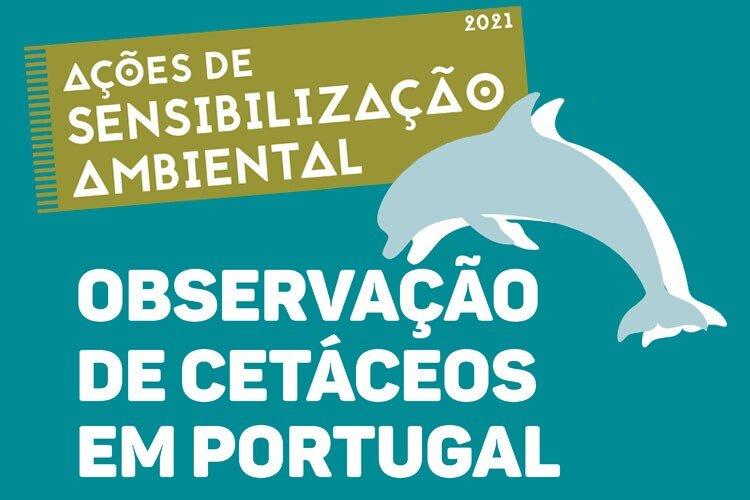 Observação de cetáceos em Portugal- ...