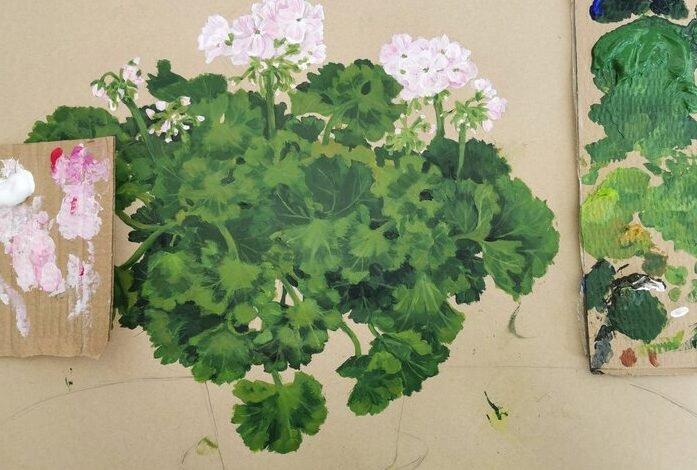 Ilustração de Plantas