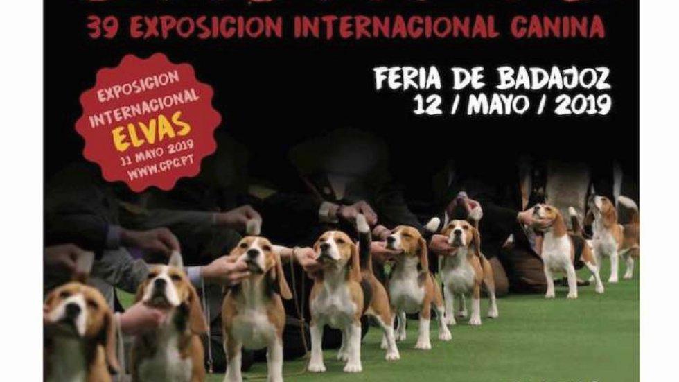 XXXIX Exposición Nacional e Internacional Canina