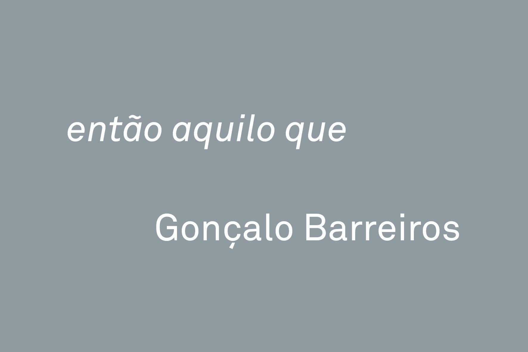Gonçalo Barreiros, 'então aquilo que' | GALERIA VERA CORTÊS