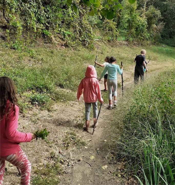 Natureza e educação: reflexões sobre a ecologia da aprendizagem