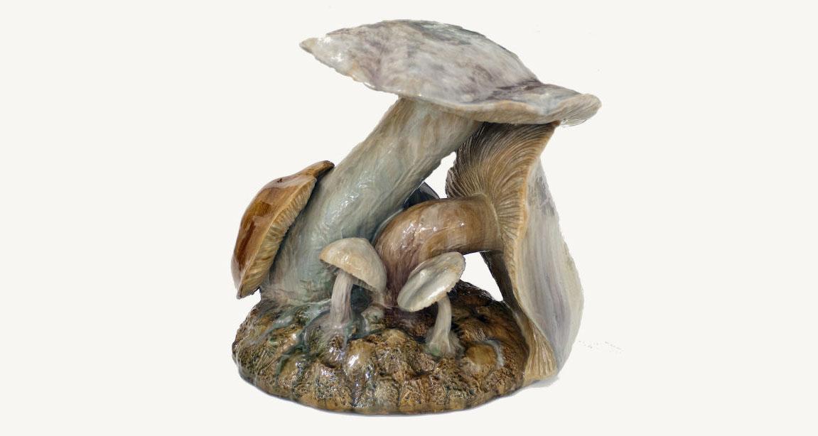 Crescem que nem cogumelos… | Laboratório de Ilustração com Teodora Boneva (online)