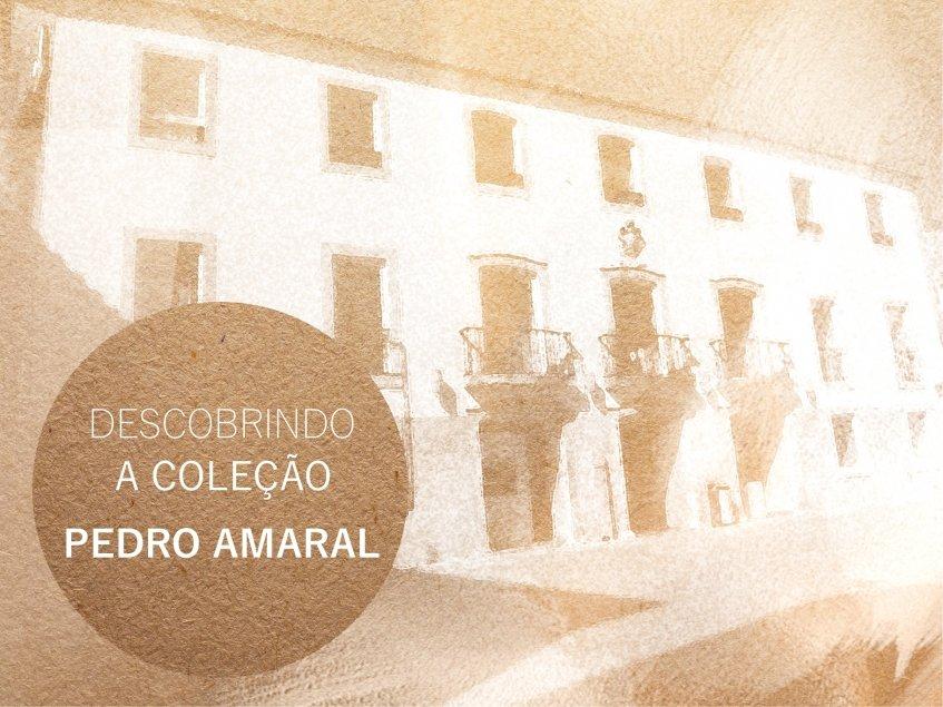 Descobrindo a coleção - Pedro Amaral [CANCELANDO]