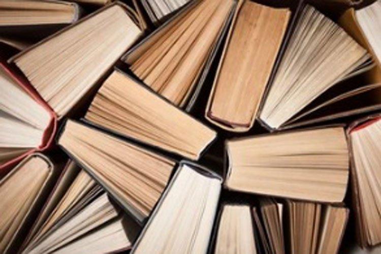 Com Um Livro por Dia…Mil Anos Vivia