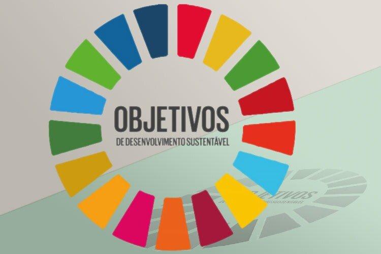 Conhecer, Aprender, Viver de Modo Sustentável: ...