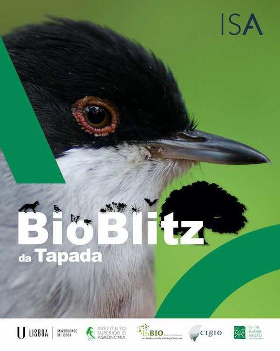 BioBlitz da Tapada