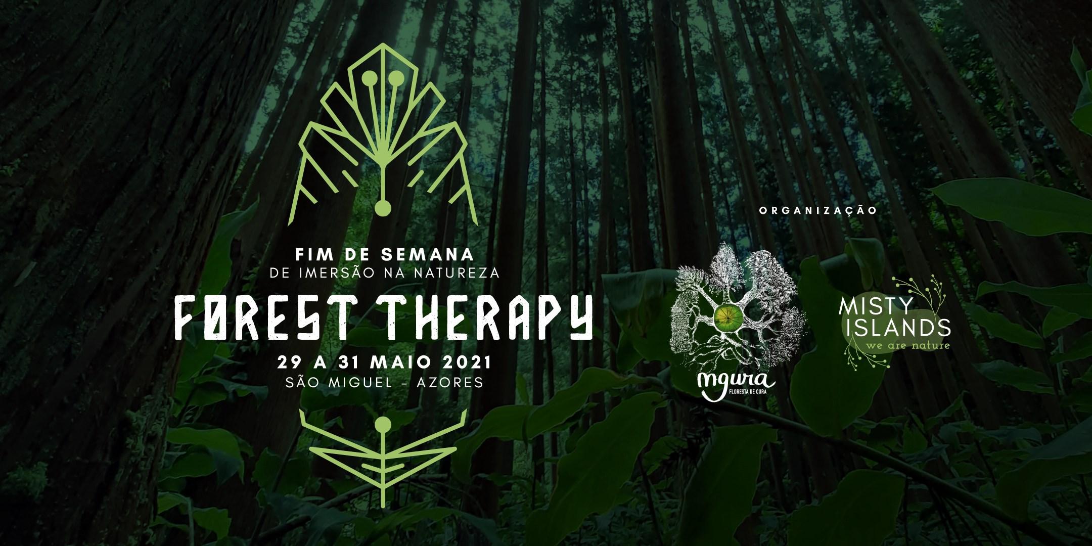 Forest Therapy - Retiro de Imersão na Natureza