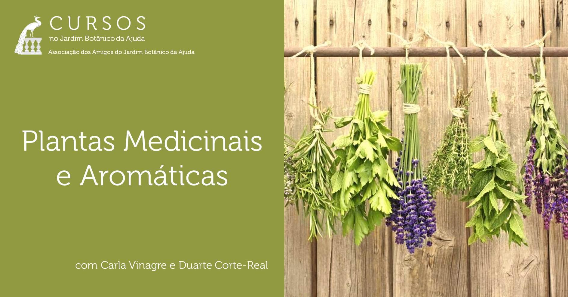 Plantas Medicinais e Aromáticas - CANCELADO