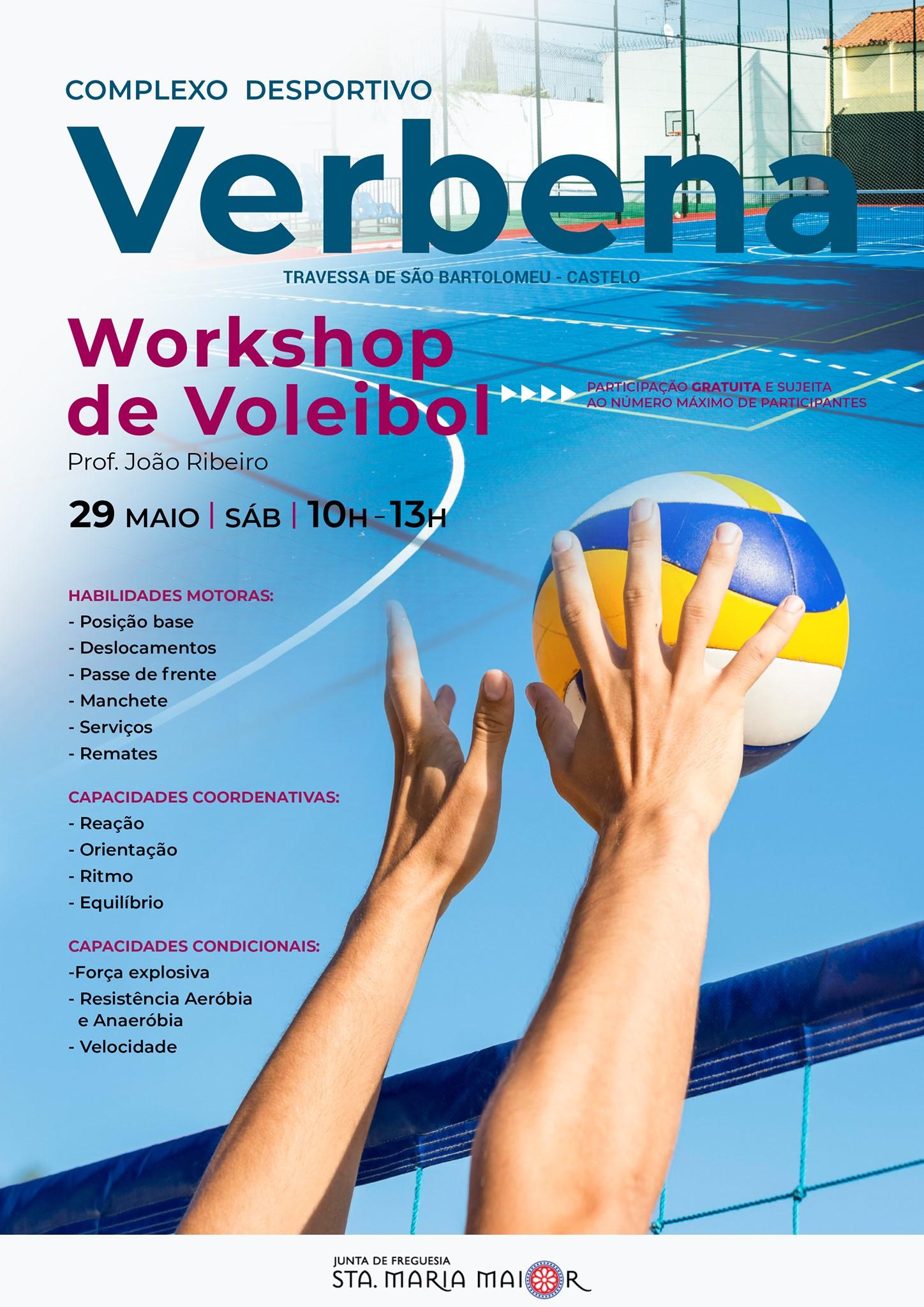 Workshop de voleibol