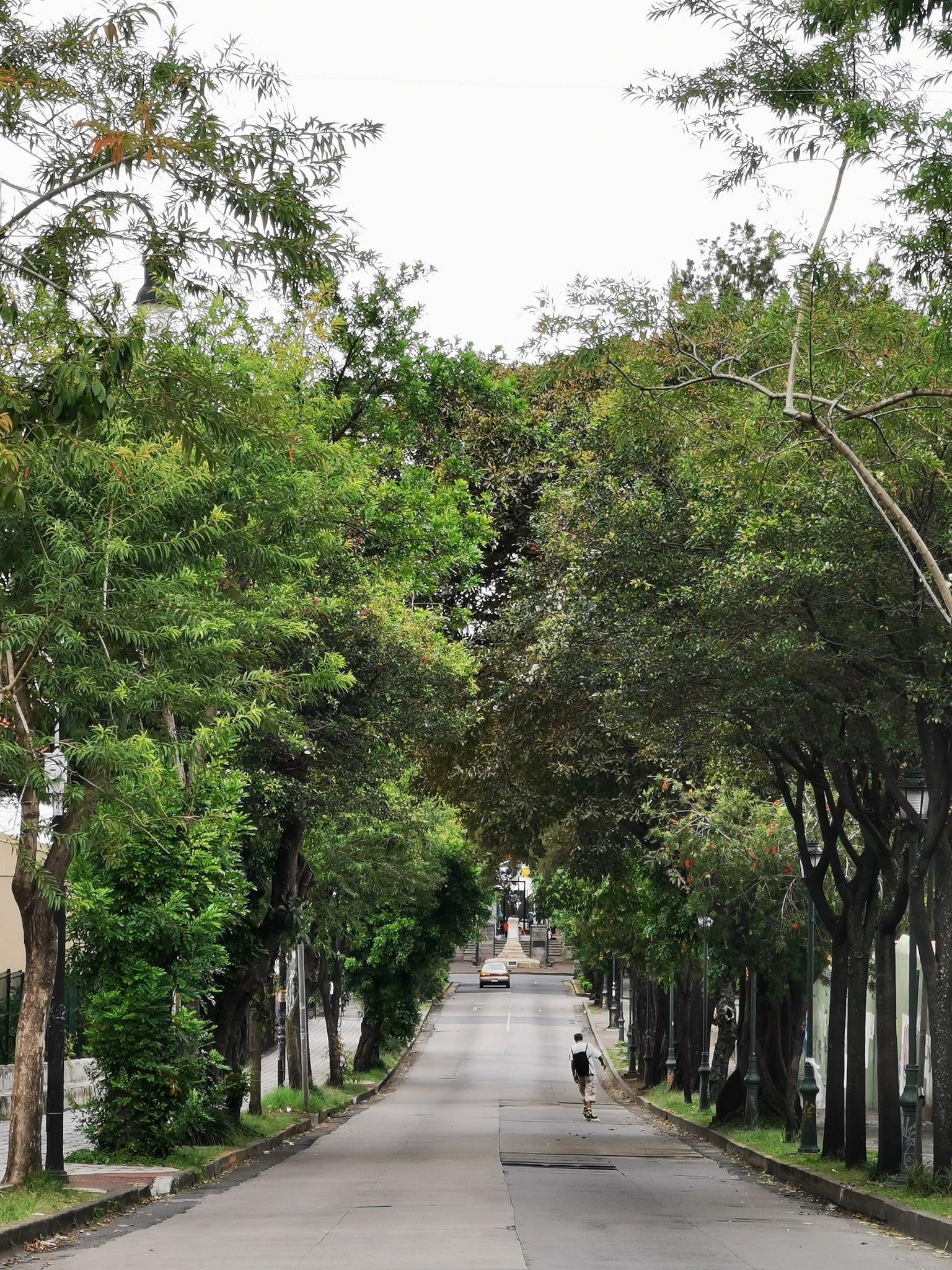 Safari por Parques, Historias y Naturaleza de Amón-Otoya y otros Rincones de SJ