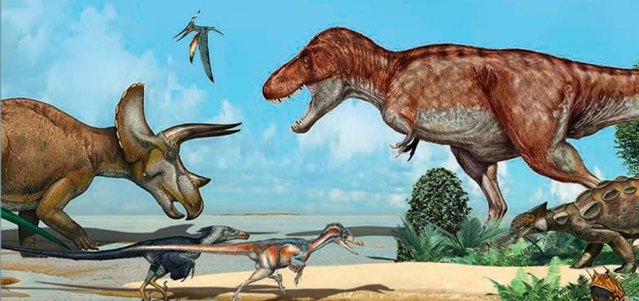 Entre Dinossáurios