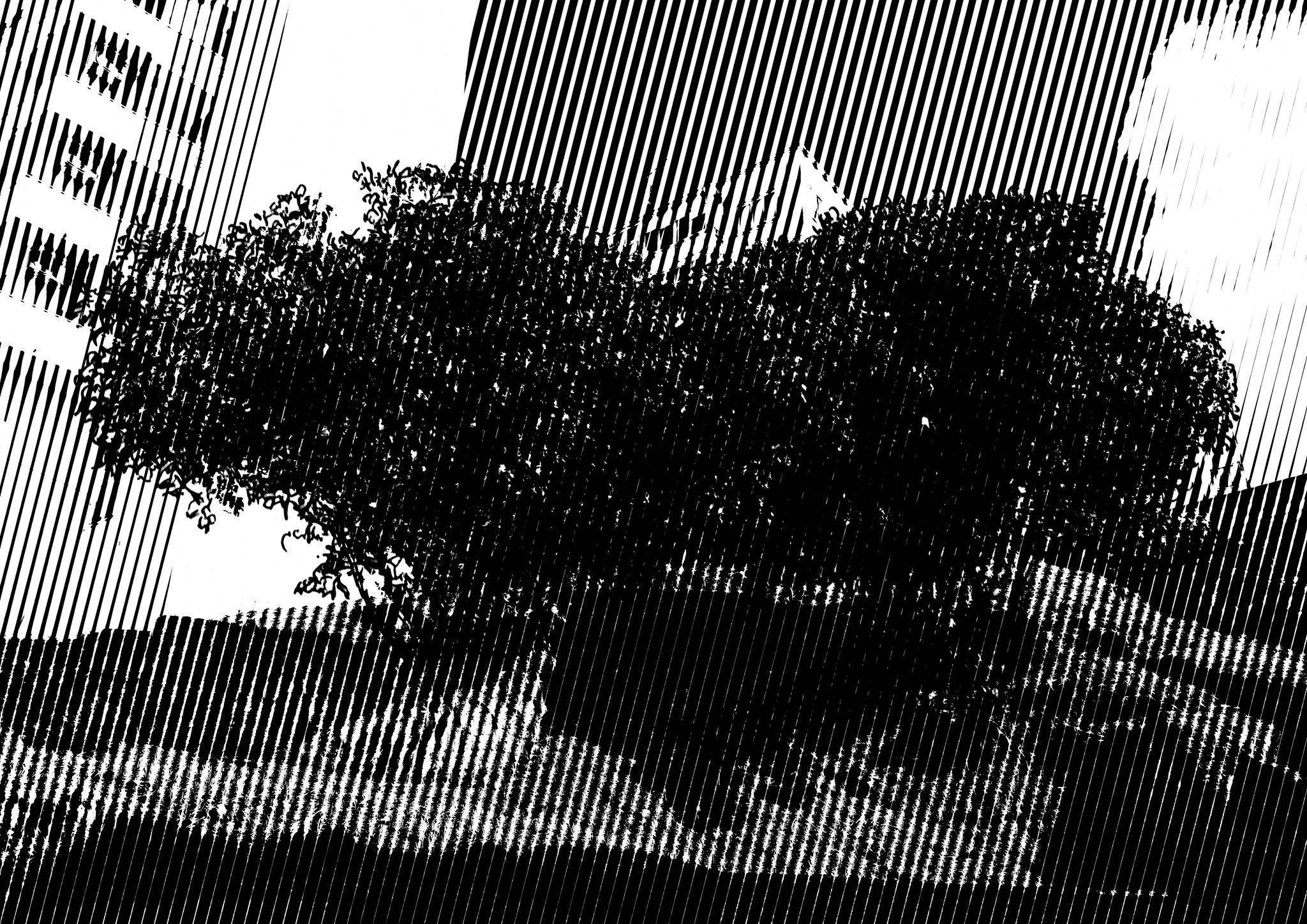 Fim de Emissão#2   Floresta Oblíqua   Opus Pistorum    Halyne (dj)