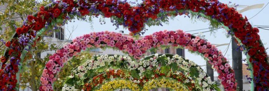Montijo Lugar de Encontros  - Festa da Flor | Mercados de Verão