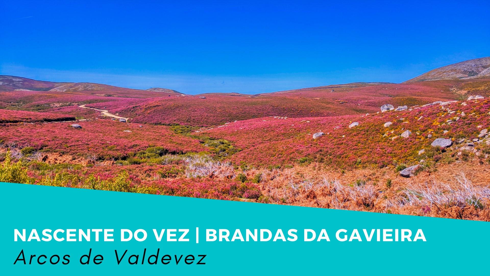 Nascente do Vez + Brandas da Gavieira