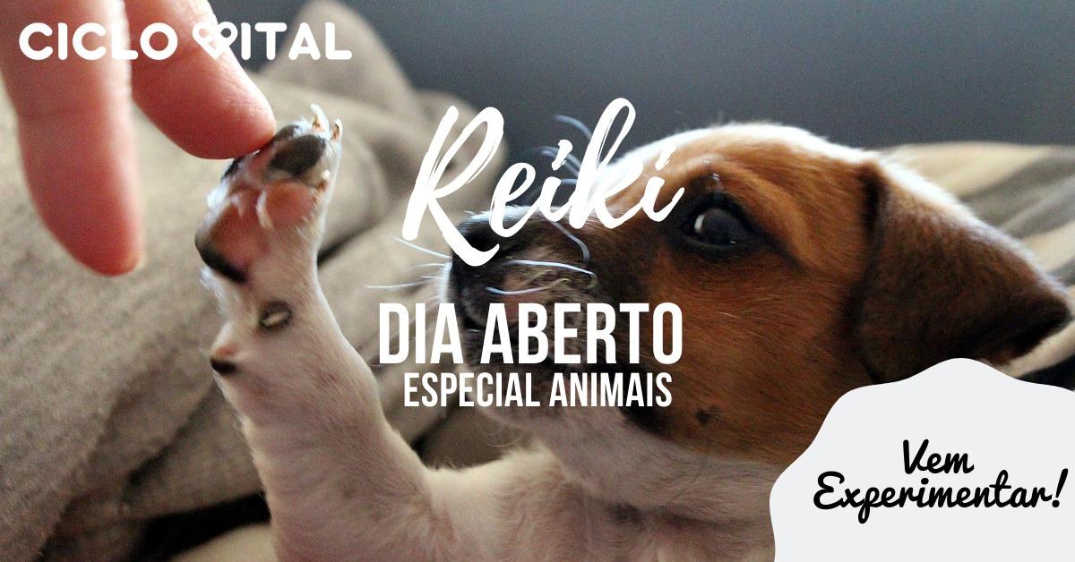 Reiki para animais - dia aberto