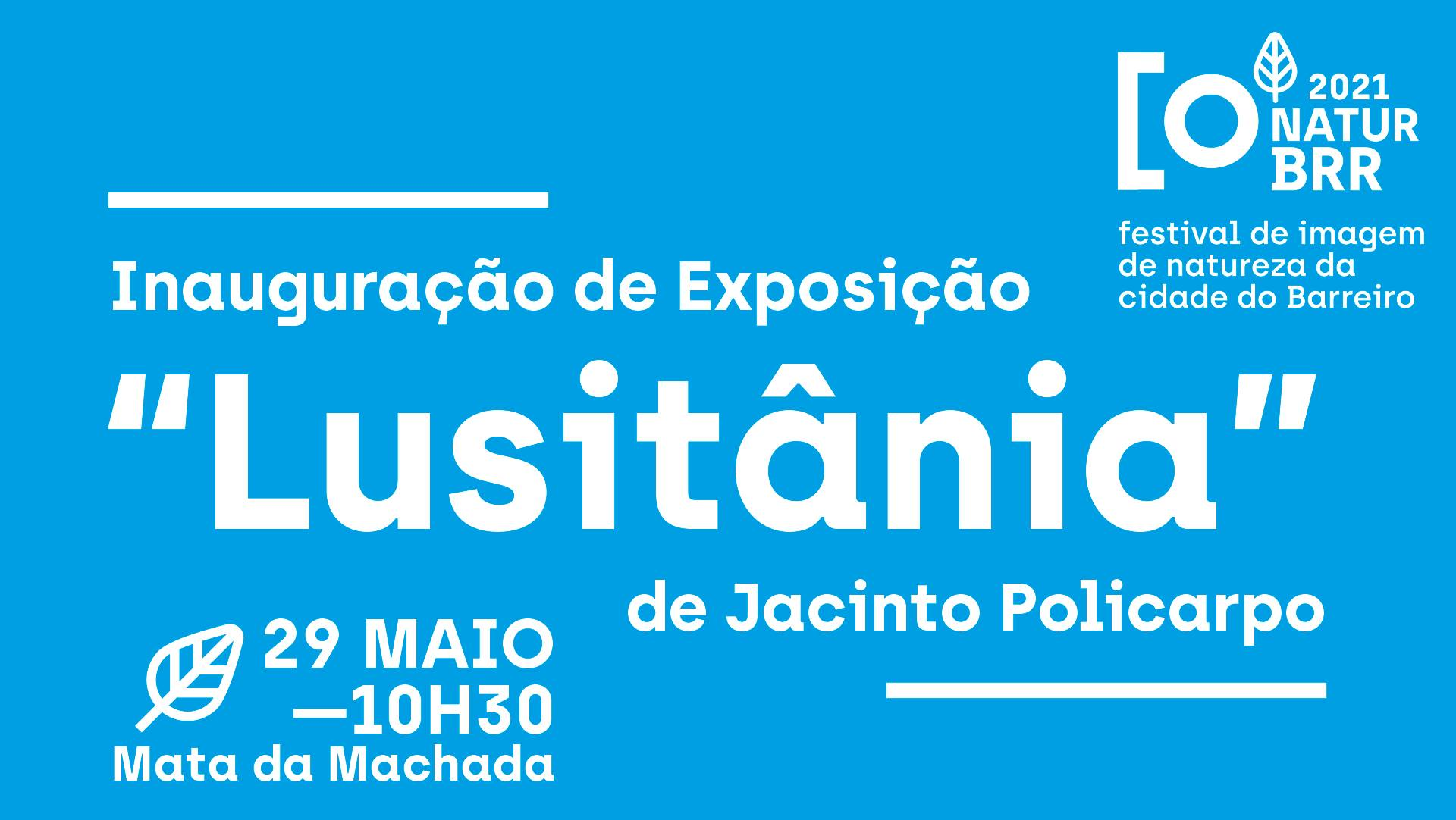 NaturBrr 2021 | Exposição 'Lusitânia'