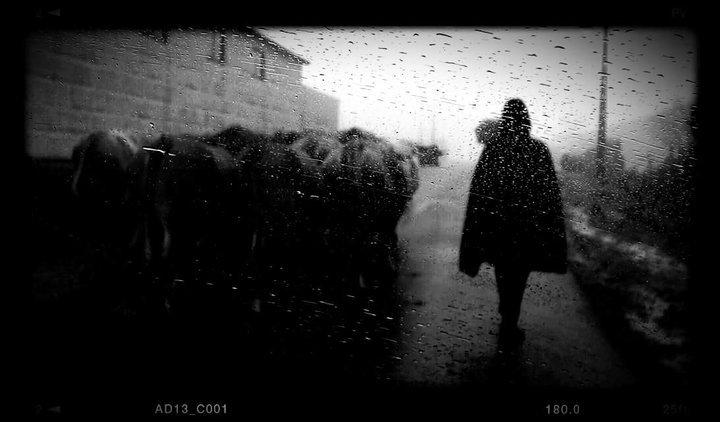 """Exposição de Fotografia """"Mulheres"""", de Mercedes Vasquez Saavedra"""