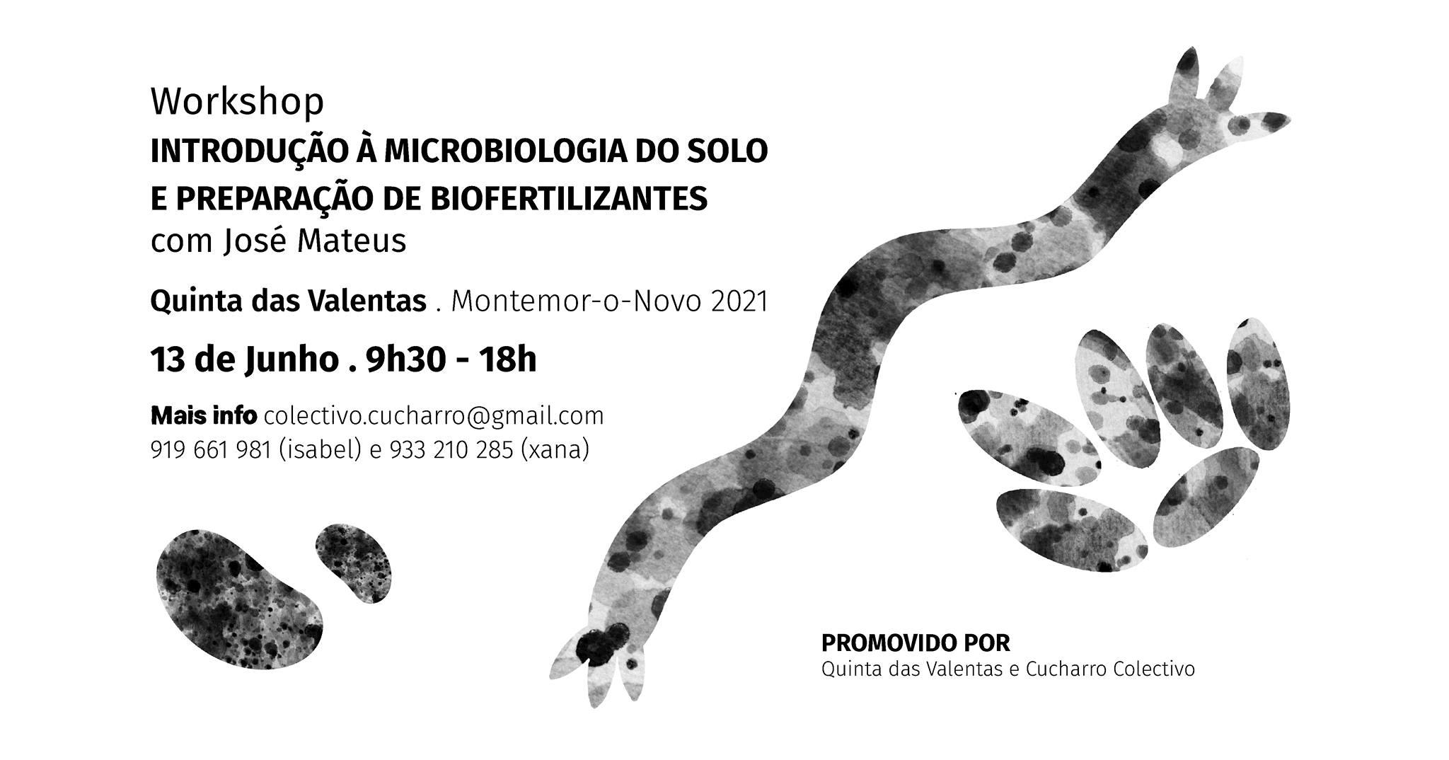 INTRODUÇÃO À MICROBIOLOGIA DO SOLO E PREPARAÇÃO DE BIOFERTILIZANTES