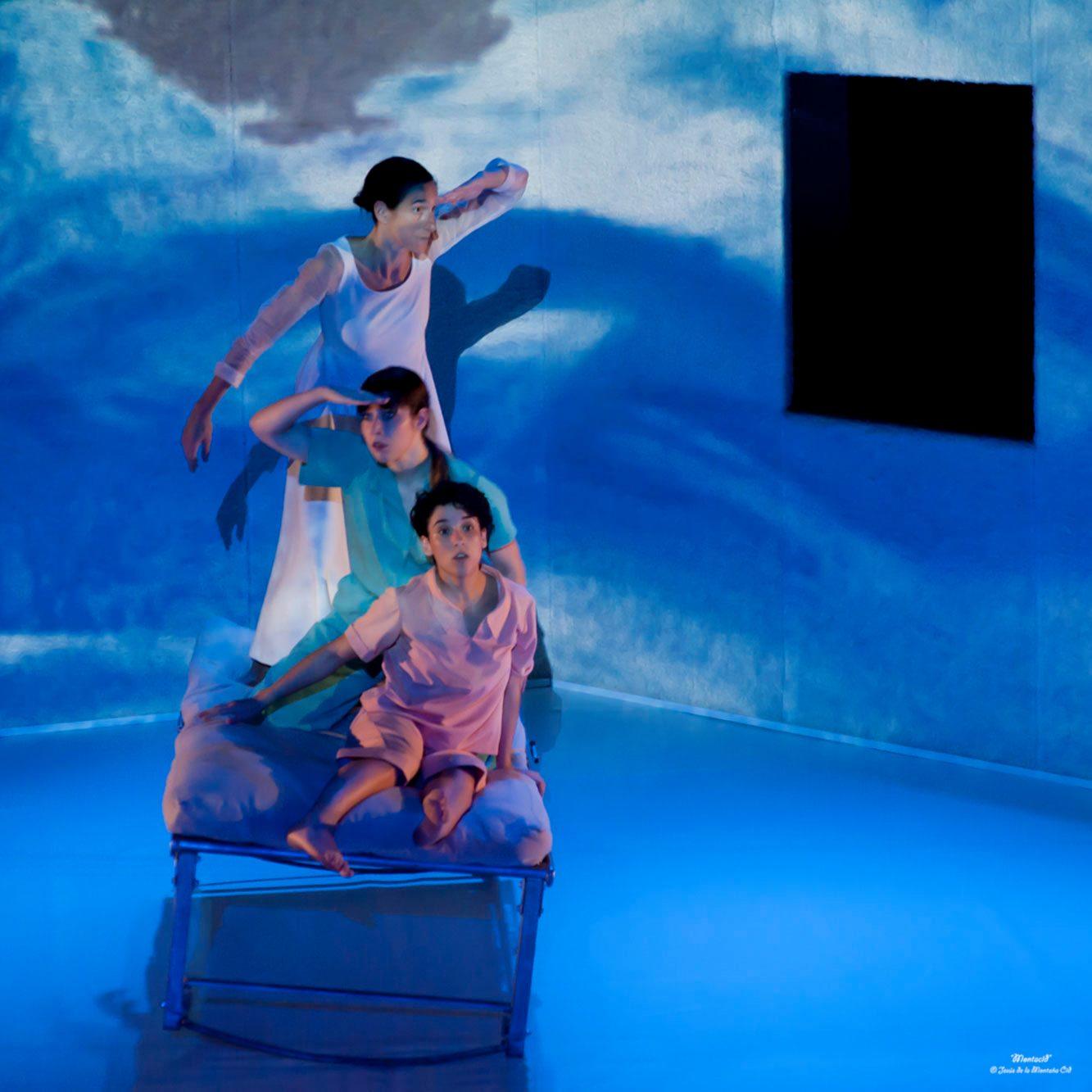 LA VIDA DE LOS SALMONES | danza-teatro