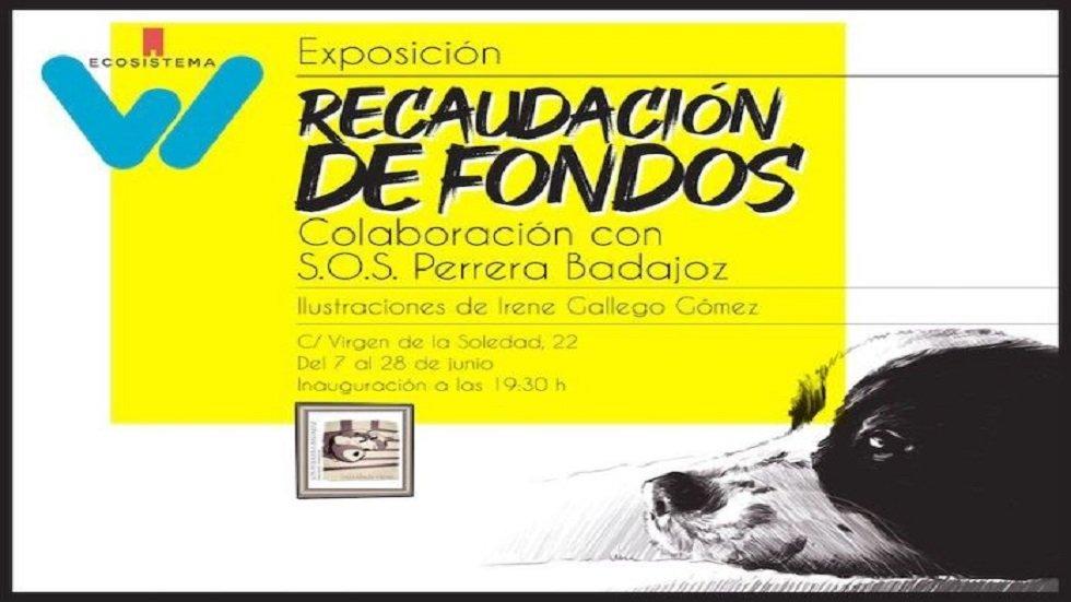 Exposición solidaria   'Recaudación de fondos'