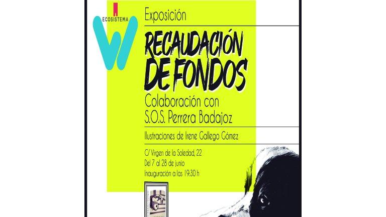 """Exposición solidaria   """"Recaudación de fondos"""""""