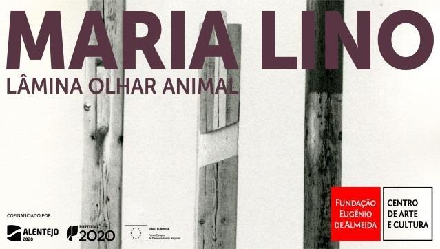 MARIA LINO lâmina olhar animal