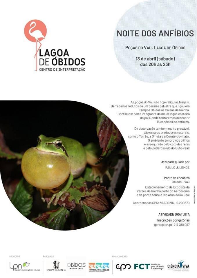 Noite dos Anfíbios  Lagoa de Óbidos