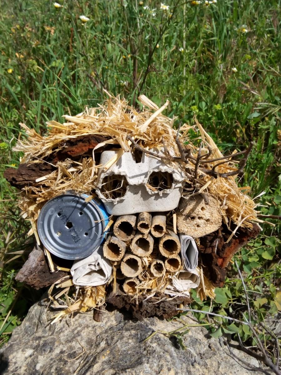 Oficina de Páscoa «Cria vida no teu abrigo para insetos»