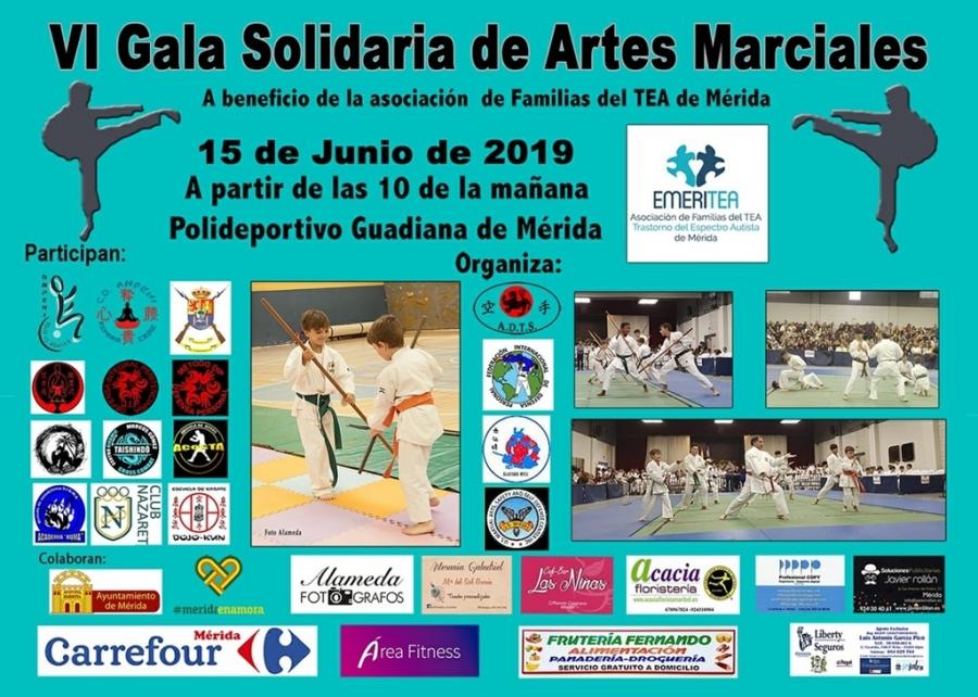 VI Gala Solidaria de Artes Marciales a beneficio de EmeriTEA