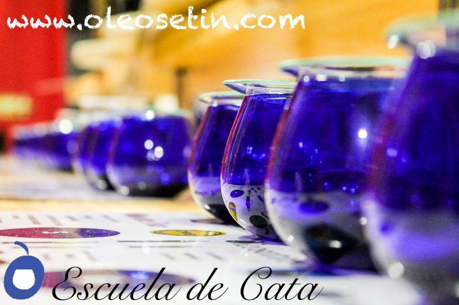Cata Degustación de Aceite Oliva Virgen Extra, Salud y Placer.