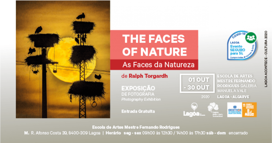 The Faces Of Nature | As Faces da Natureza | Ralph Torgardh