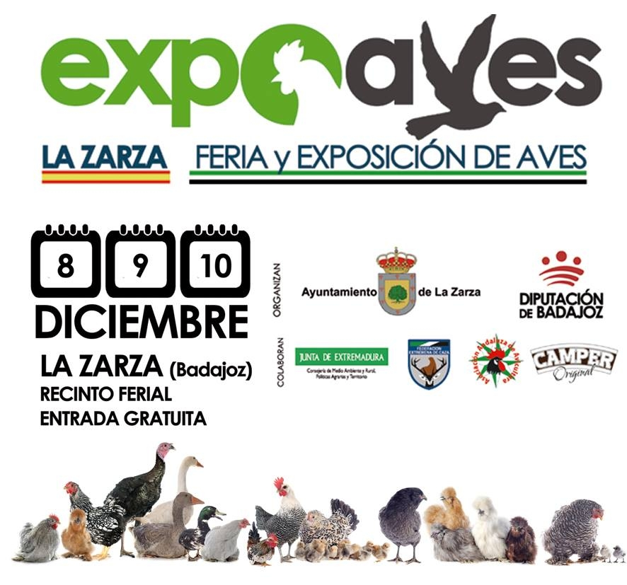 EXPOAVES
