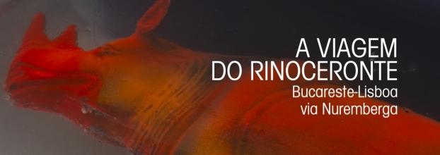 """A exposição """"A viagem do rinoceronte. De Bucareste a Lisboa via Nuremberga""""  na Galeria do Instituto Cultural Romeno em Lisboa"""