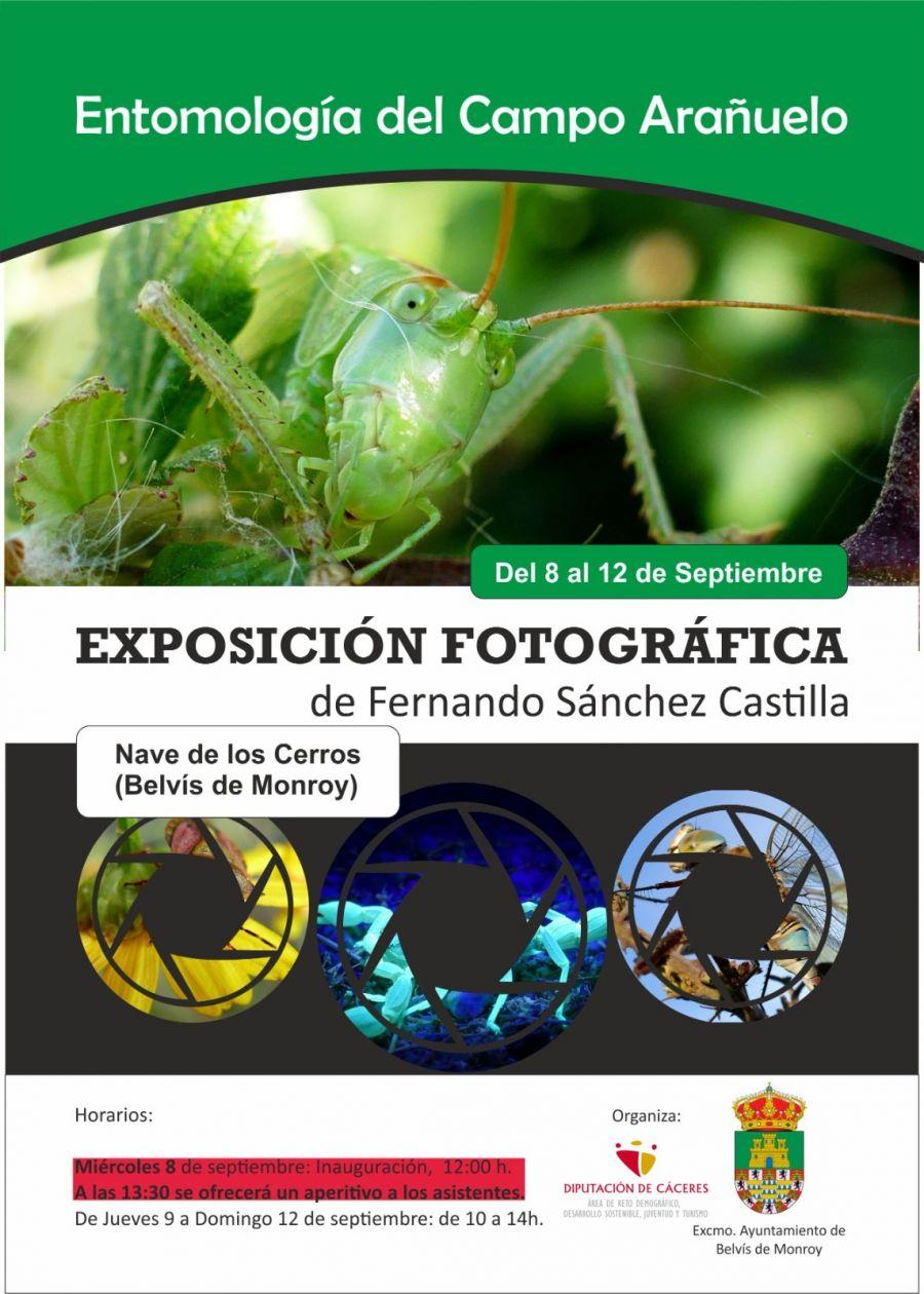 Exposición fotográfico entomológica