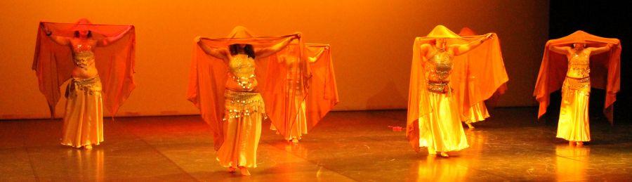 Aulas regulares de Dança Oriental Árabe 2019 / 2020