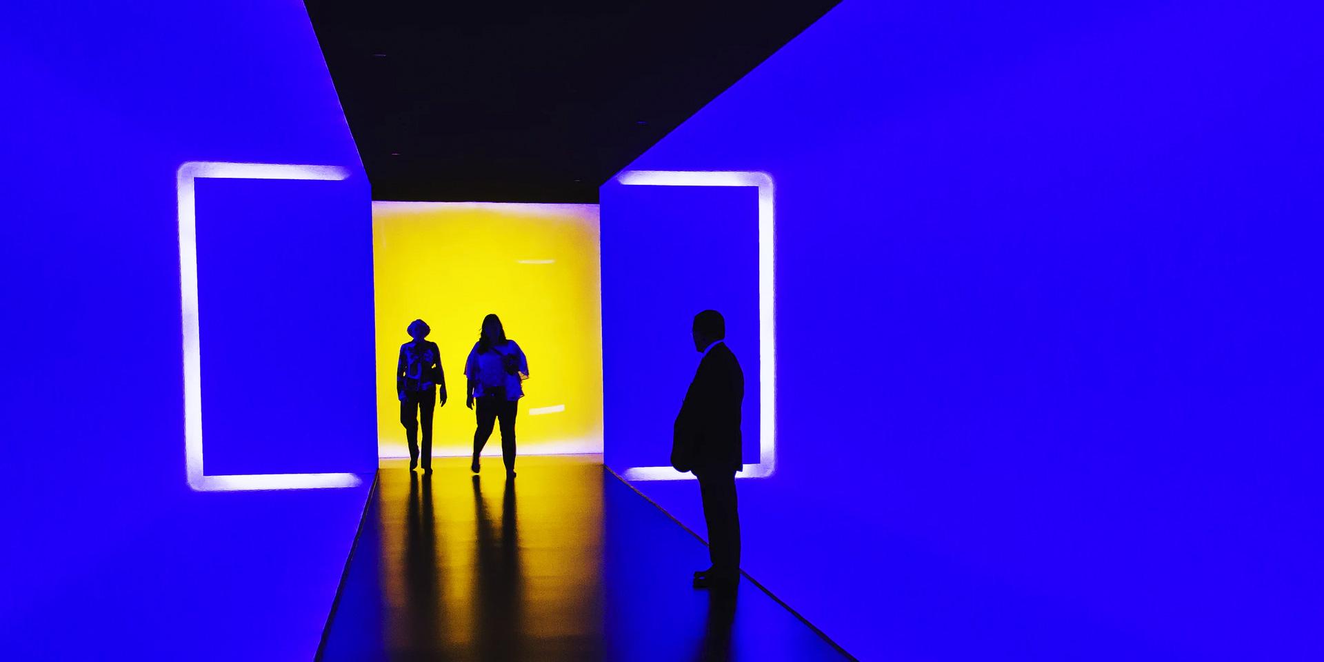 Exposições / Exhibitions / Exposiciones