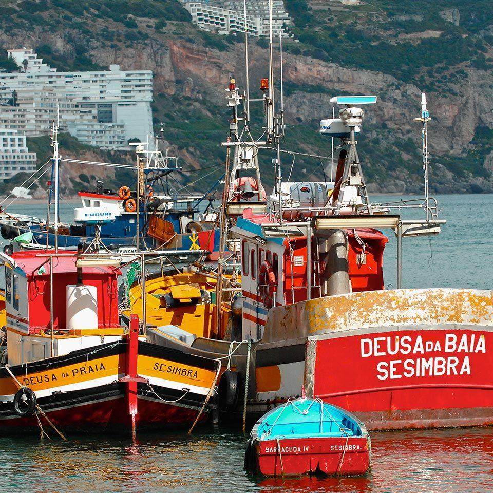 Colorful fishing boats